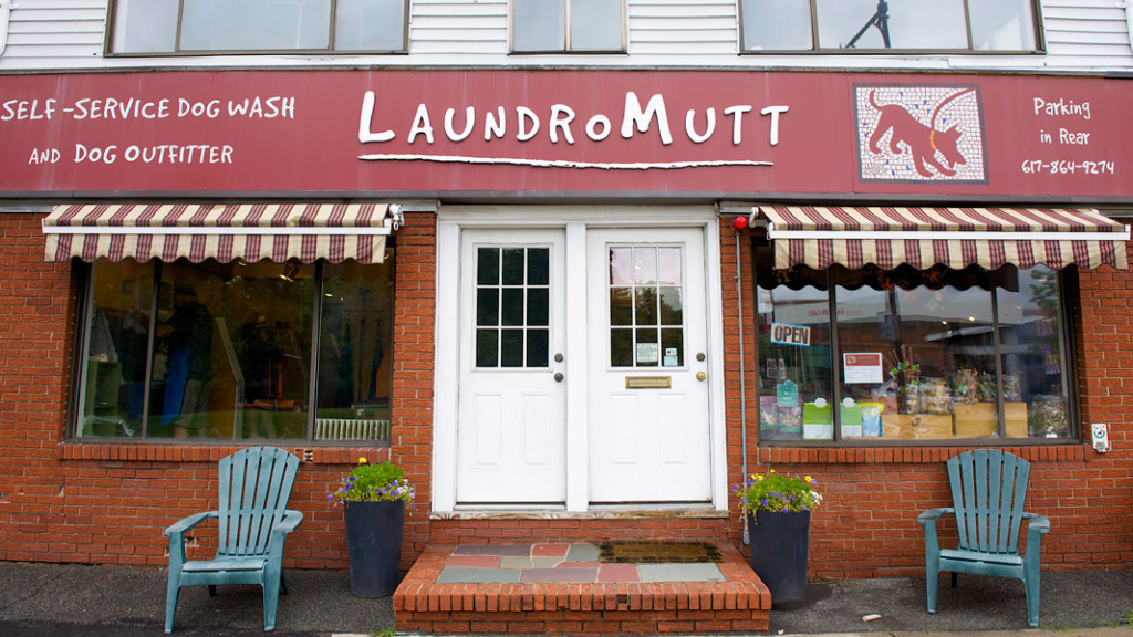 Laundromutt Cambridge MA Dog Wash, Dog Grooming, Dog Food, Dog Toys
